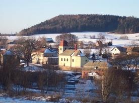 Borovnice