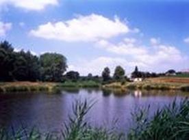Budislav