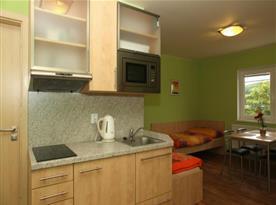 Kuchyňka s rychlovarnou konvicí, mikrovlnnou troubou a lednicí