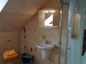 Koupelna s masážním sprchovým koutem a toaletou
