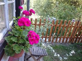Detail zahrady