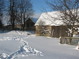 V zimě