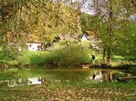 Rybník v areálu