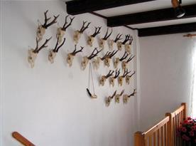 Dekorace na schodišti
