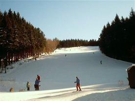 Možnost využít lyžařské středisko Klepáčov