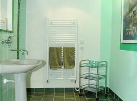 Koupelna se sprchou, toaletou a umyvadlem v pokoji penzionu