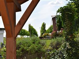 Výhled na vinohrad z venkovního posezení