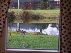 pohled z okna do zahrady