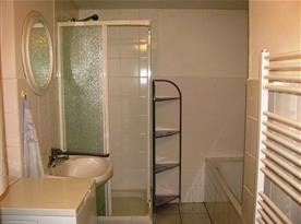 Koupelna s vanou, sprchou a umyvadlem