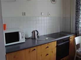 Kuchyně s varnou deskou, lednicí, mikrovlnou troubou a rychlovarnou konvicí