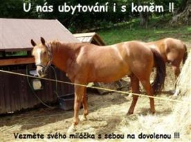 Nabízíme ubytování i s Vaším koněm