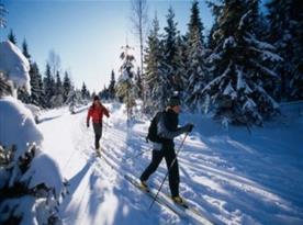 Okolní krajina vhodná pro běžkaře