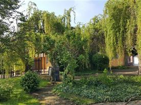 Pohled ze zahrady na chalupu