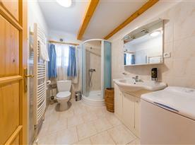 Koupelna se sprchovým koutem, WC a umyvadlem