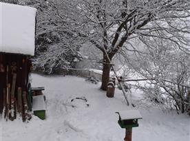 Cely den sněží, leden 2021