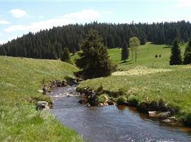 Kozí potok