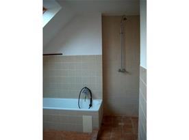 Koupelna s vanou, sprchovým koutem, umývadlem a zrcadlem