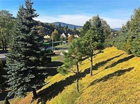 Výhled z horní části zahrady na přední část pozemku