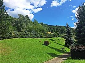 Přední část zahrady s příjezdovou cestou k chalupě