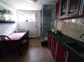 Apartmán v suterénu pro 5 osob-Kuchyně se sprchovým koutem