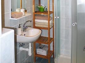 Koupelna se sprchovým koutem a WC