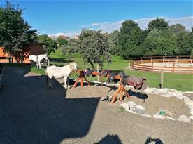 Parkoviště pro koně