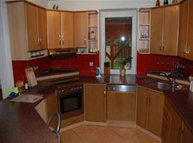 Plně vybavená kuchyně s výhledem na zahradu
