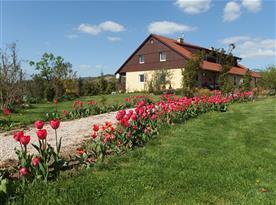 Pohled na dům od příjezdu - jaro