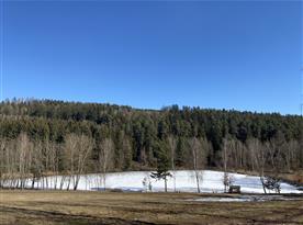 Štikovský rybník 1,5 km  od nemovitosti