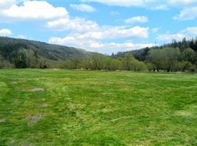 Čechův mlýn - louka na ostrově mezi řekou Berounkou a mlýnským náhonem