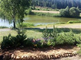 Chrastenský rybník