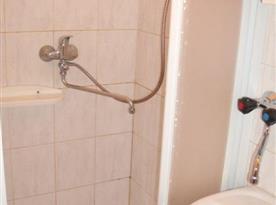Koupelna s toaletou, sprchou a umyvadlem
