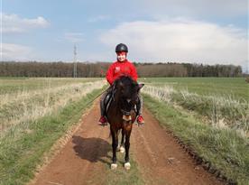 Možná projížďka na koních