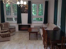 Obývací místnost s krbem