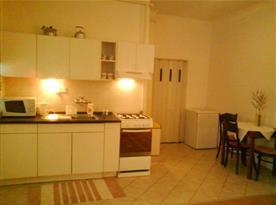 Kuchyně se sporákem, lednicí, mikrovlnnou troubou a varnou konvicí