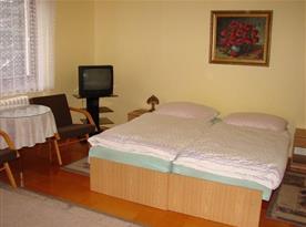 Pokoj s lůžky a televizorem