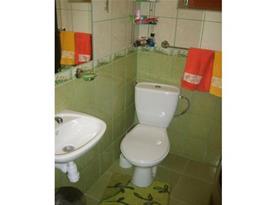 Toaleta s umývadlem v rámci koupelny